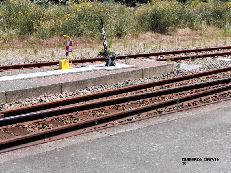 "Ballade à Quiberon en ""tire bouchon""  28 juillet 2019 Img_2063"