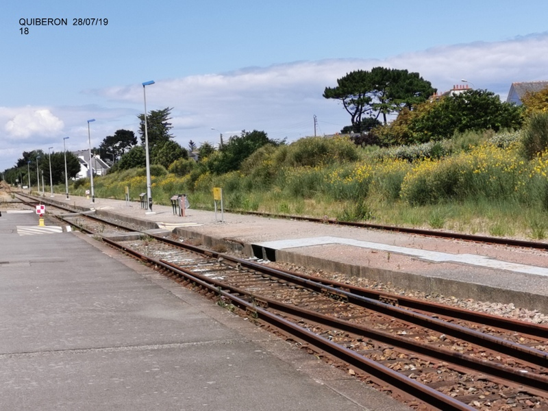 "Ballade à Quiberon en ""tire bouchon""  28 juillet 2019 Img_2065"