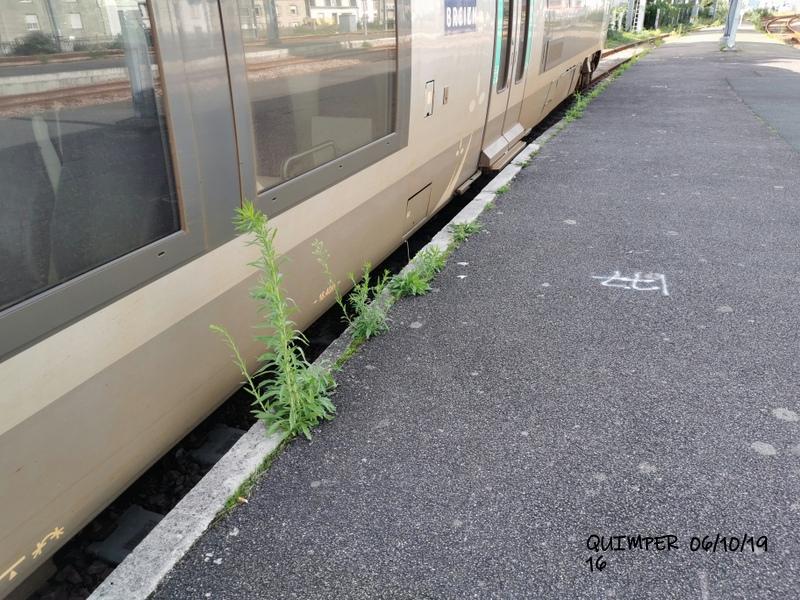 En gare de Quimper le 04/10/19 et le 06/10/19 Img_2287