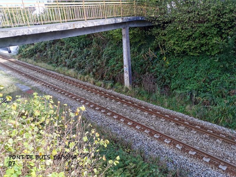 Ligne Quimper-Landerneau (Brest) Halte de Pont de Buis 06/10/19 Img_2298