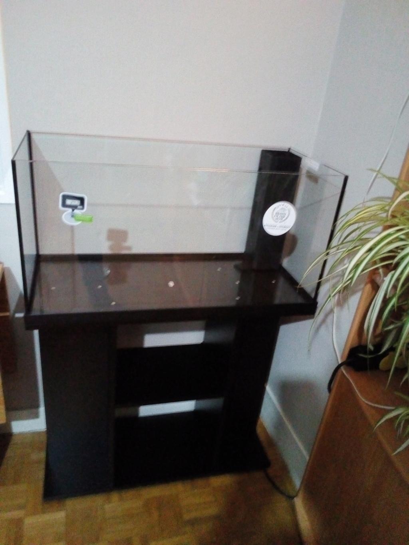 Livraison aquarium 15512910