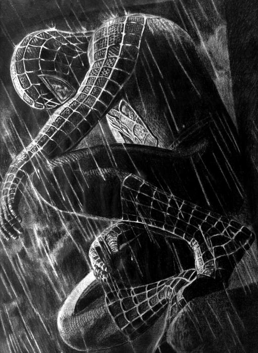 J'aime ou je n'aime pas - Page 30 Spider13
