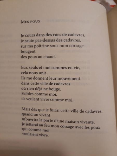 Les plus beaux poèmes - Page 62 20190871
