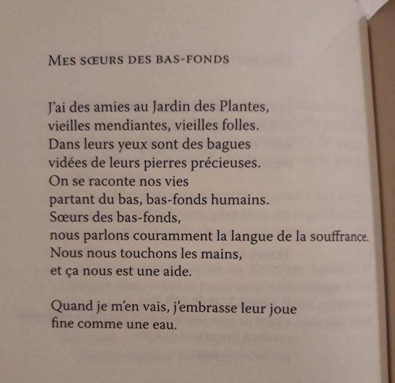 Les plus beaux poèmes - Page 62 20190873