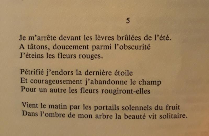 Les plus beaux poèmes - Page 62 20190874