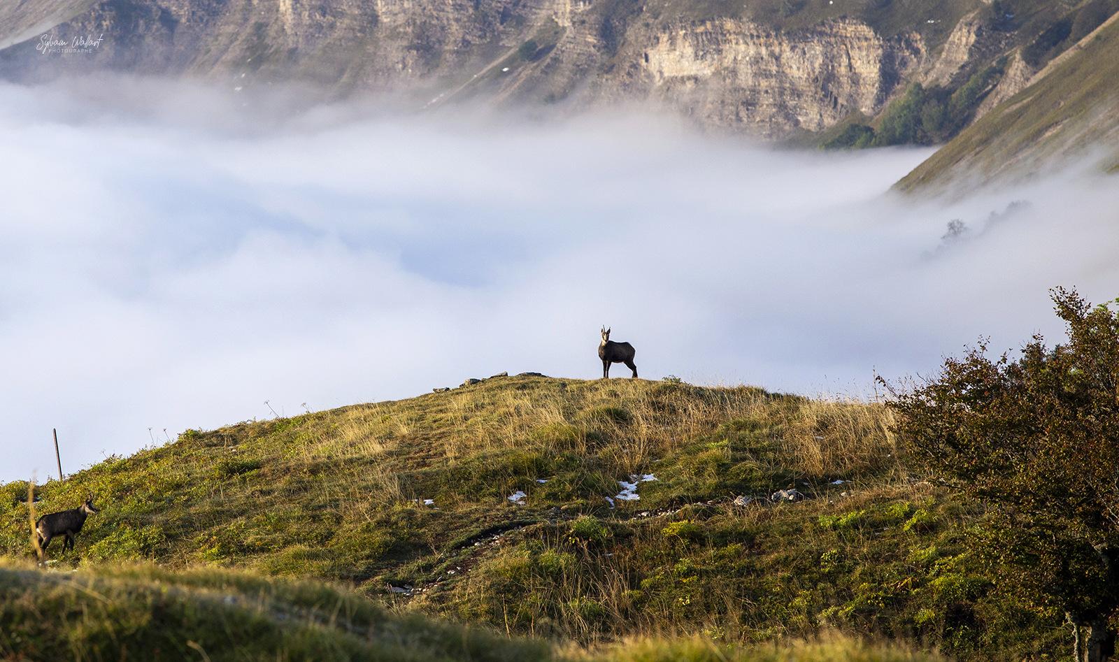 1 semaine dans le Jura : Les Photos Img_0815