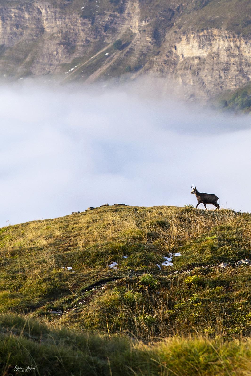 1 semaine dans le Jura : Les Photos Img_0816