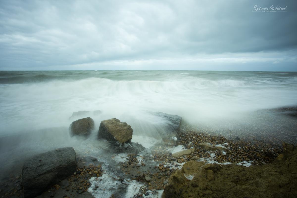 Quelques photos de la côte Img_7310