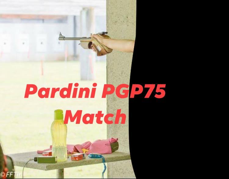 vol d'armes Pardin11