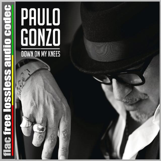 CD (SINGLE) (FLAC) PAULO GONZO - DIZ QUE SIM - DOWN ON MY KNEES (2019). 216