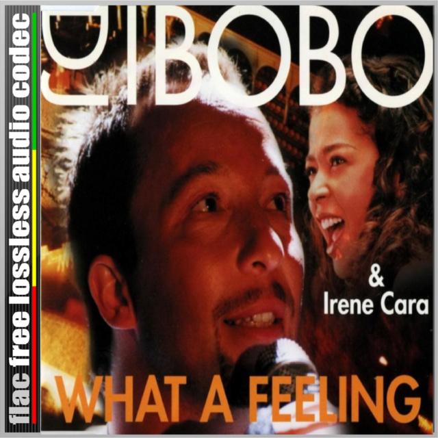 CD (SINGLE) (FLAC) DJ BOBO - WHAT A FEELING (COM IRENE CARA (1983). Cd19