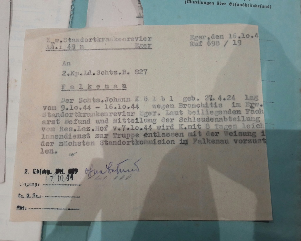 Wehrpass et lot de documents  20190233
