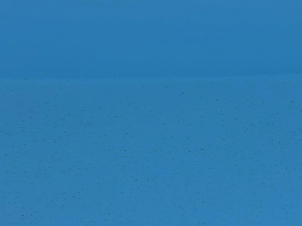 problème liner nombreux tout petits points brun (semblable rouille) Img_1011