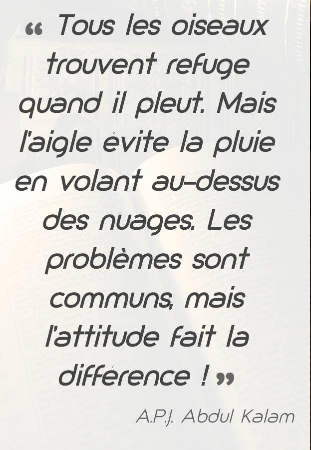 Psychologie de comptoir  - Page 8 077cba10