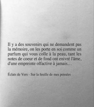 Philosophie de comptoir de la vie - Page 5 29541610