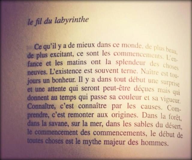 Beat d'amarrage. - Page 6 49e24510