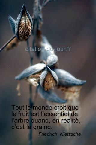 Philosophie de comptoir de la vie - Page 6 53187d10