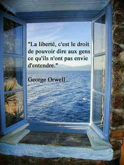 Philosophie de comptoir de la vie - Page 5 A9de8611
