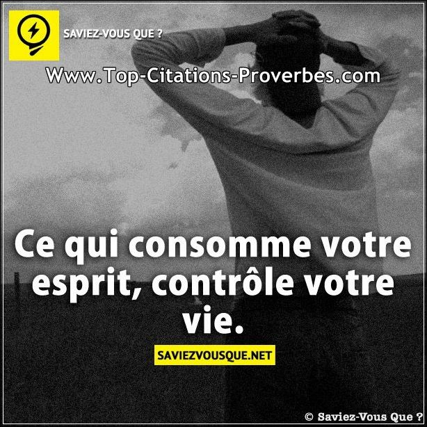 Philosophie de comptoir de la vie - Page 5 Citati52