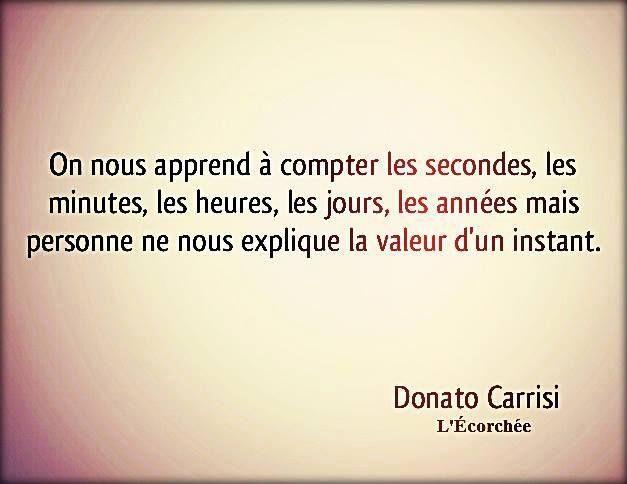 Philosophie de comptoir de la vie - Page 5 D17a8310