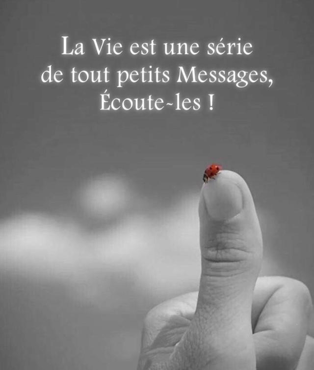 Philosophie de comptoir de la vie - Page 6 E78d2110