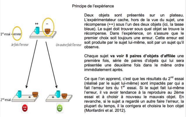 Philosophie de comptoir de la vie - Page 6 Image-10