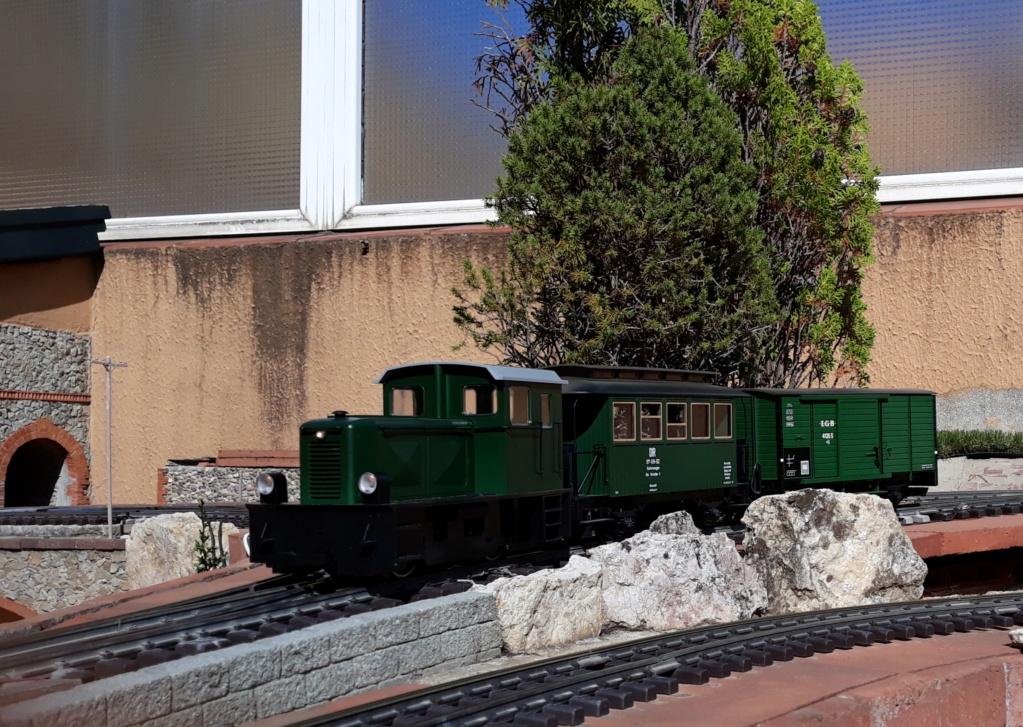 Els Ferrocarrils de la Terrassa-III [Olot] - Página 42 20190816