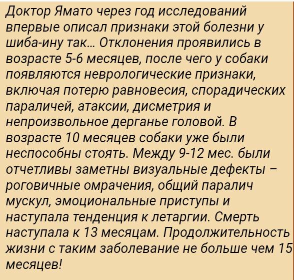 Ганглиозидоз - Страница 4 2019-010