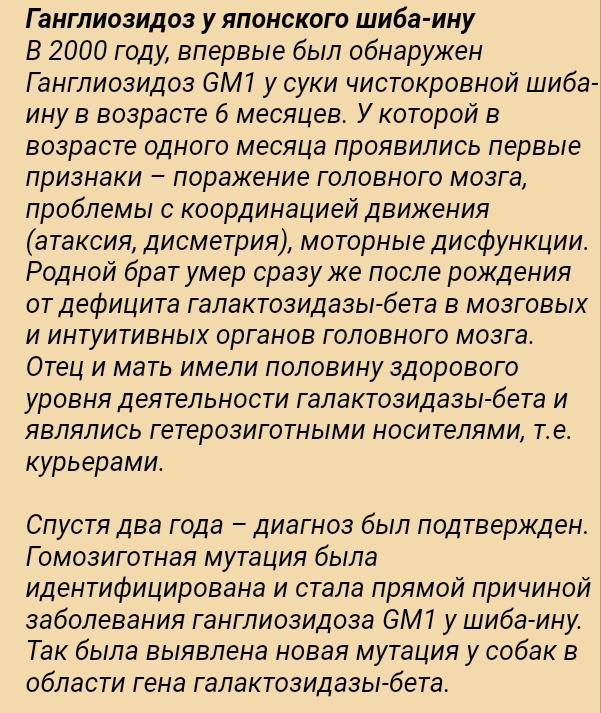 Ганглиозидоз - Страница 4 2019-011