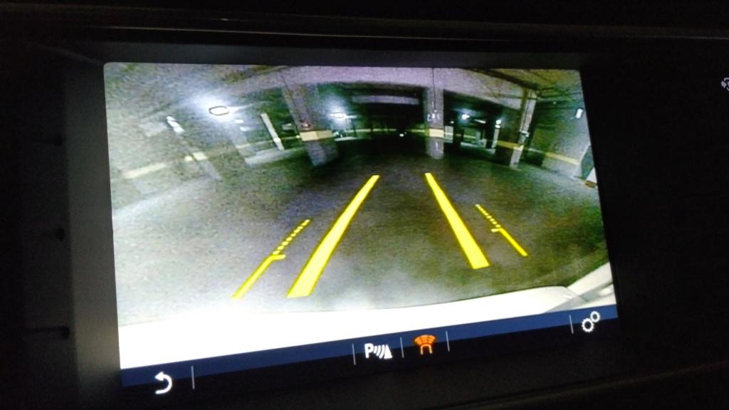 Perdida lineas camara parking trasero Img_2044