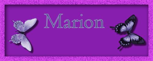 Fotoalbum van Marion Banner10