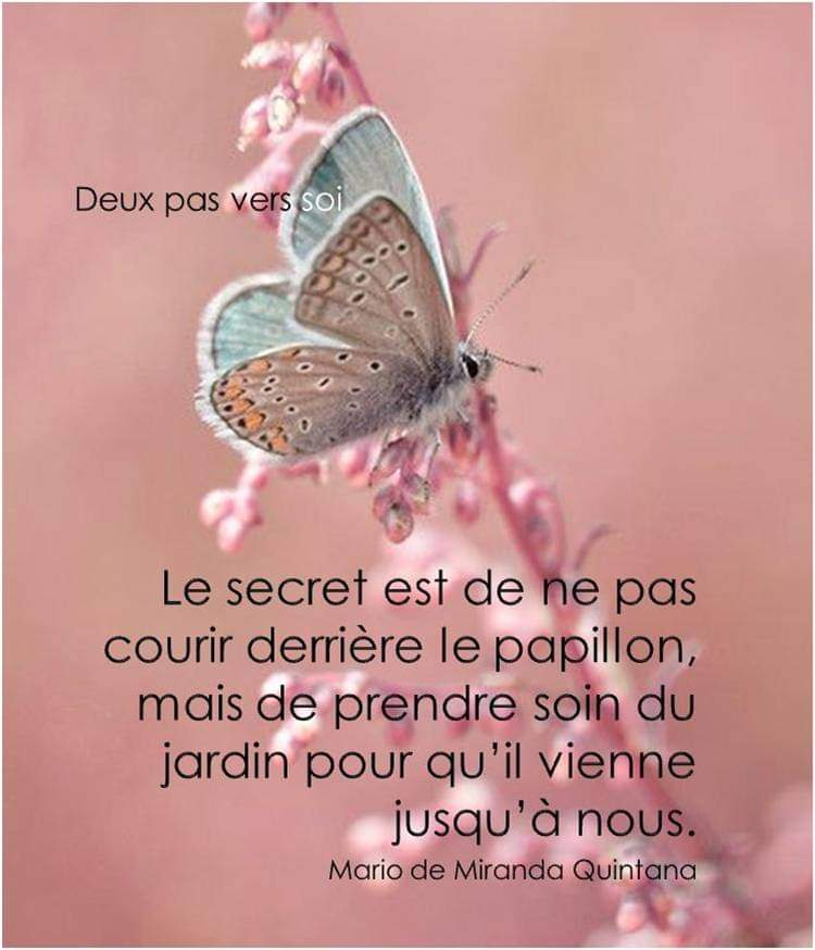 CLIN d'oeil quotdien  - Page 5 Fb_img32