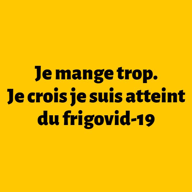 Les meilleurs blagues/montages/meme sur le COVID Frigov10