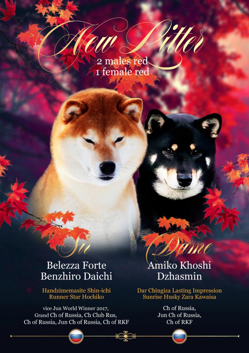 Belezza Forte Benzhiro Daichi (Зуко) - Страница 4 Aaau_110