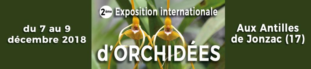 1ere exposition internationale en CHARENTE MARITIME  Décembre 2017 Image10
