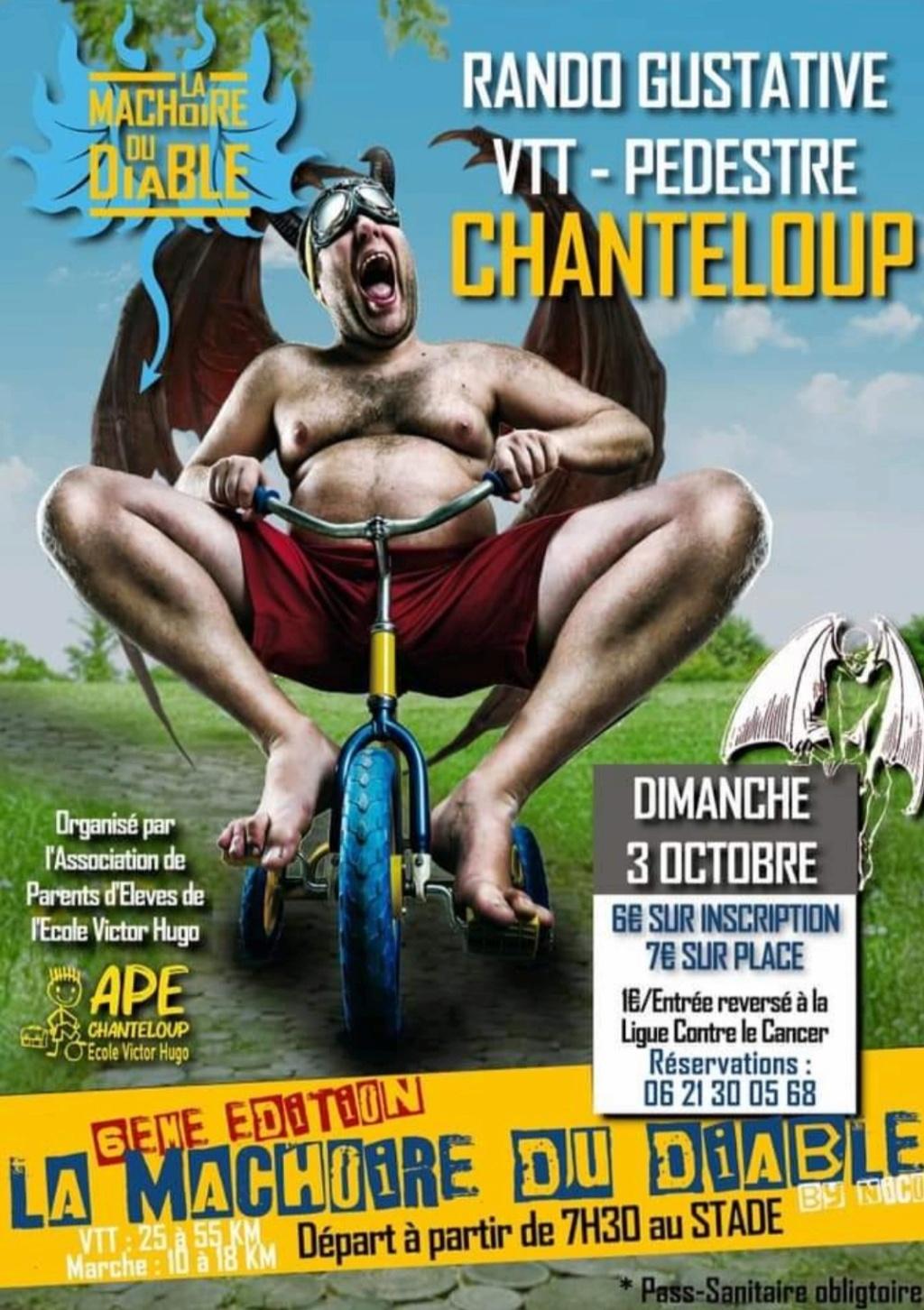 Chanteloup (79) Img_2025