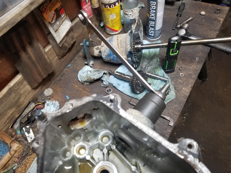 Ford LT 110 Off-Road Build - Page 14 20200138