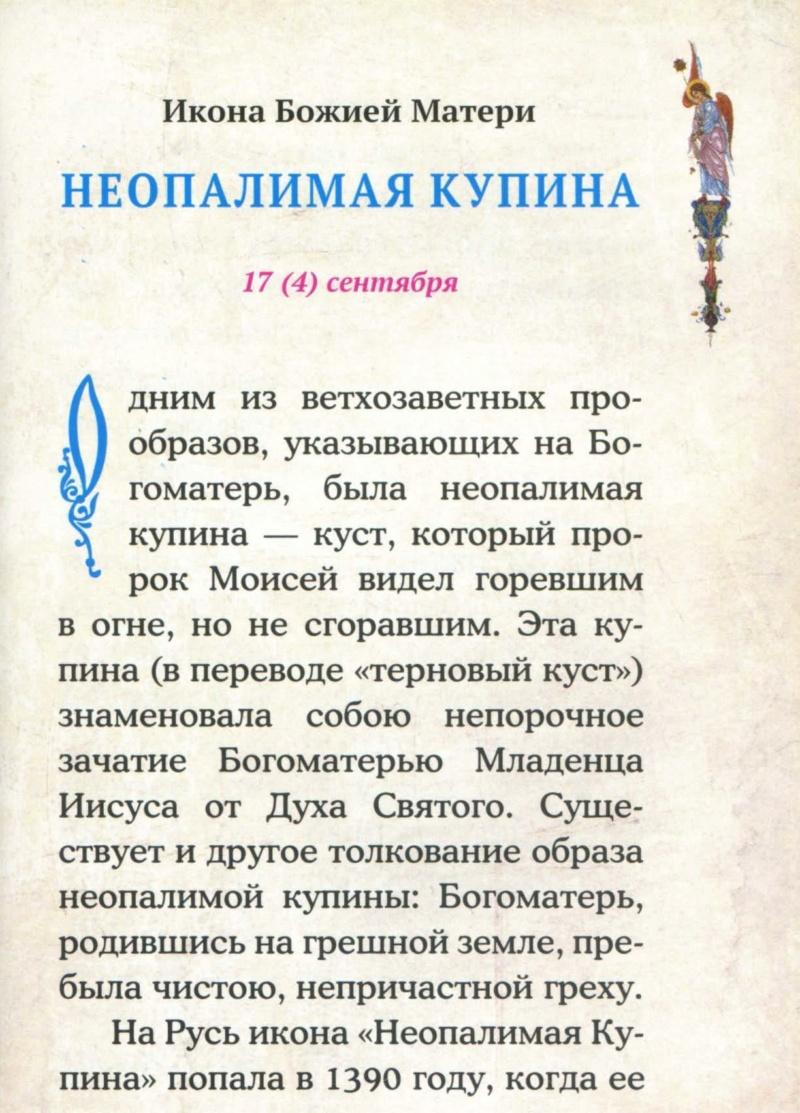 ИКОНА БМ НЕОПАЛИМАЯ КУПИНА U_a110