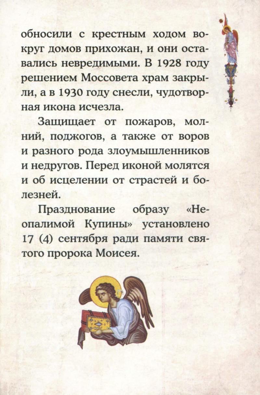 ИКОНА БМ НЕОПАЛИМАЯ КУПИНА U_a310