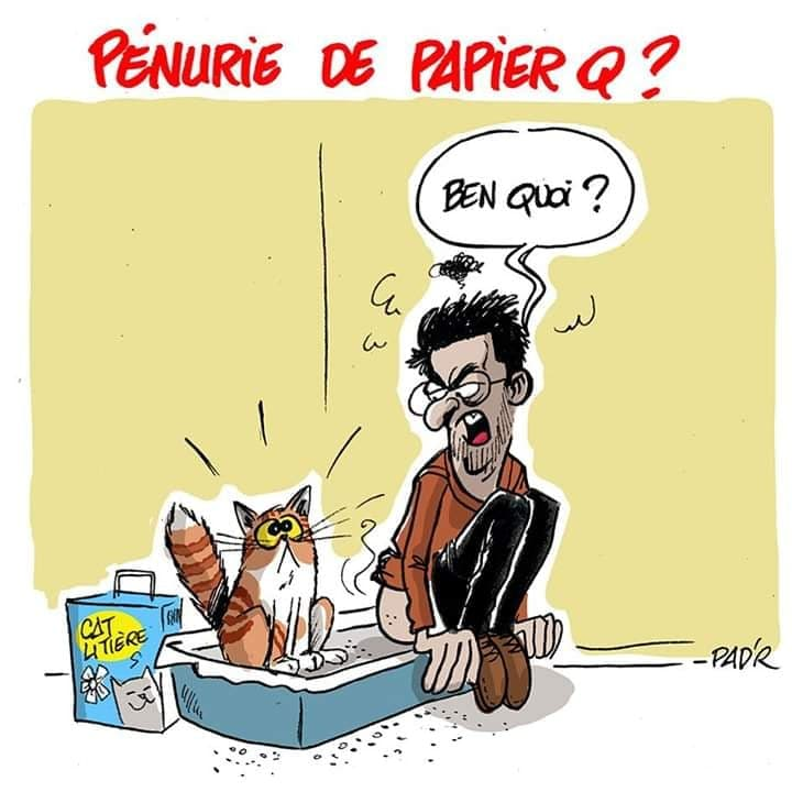 Coronavirus Infos au Quotidien - Page 3 Pq10