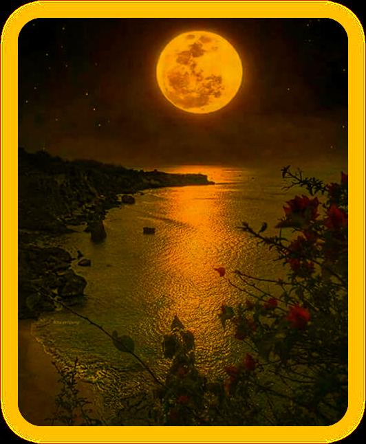 Магическая Лунная Вода. A_1110