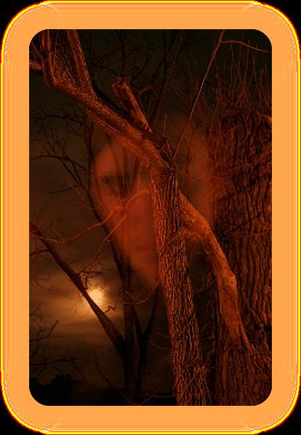 Время: Холостая Луна. A_1111