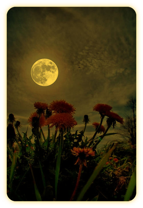 Заклинание медитации Полнолуния. A_7_110
