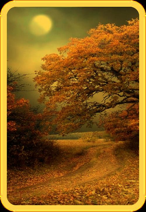 Заклинание медитации Полнолуния. A_810