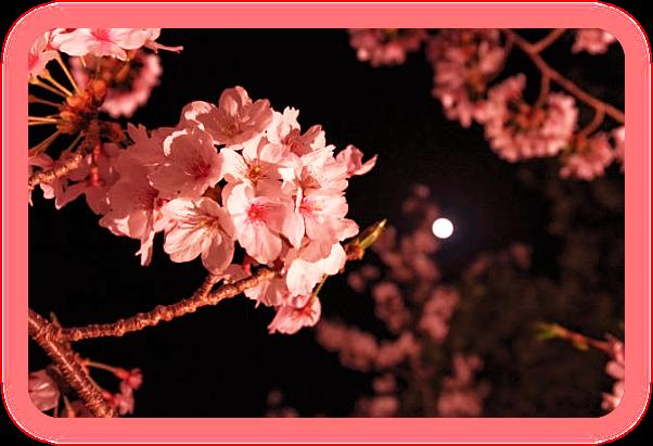 Апрель – Розовая Луна. A__aaa10