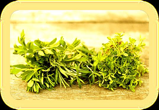 Травы друидов для Литы / Середины Лета / Летнего Солнцестояния. Aao_211