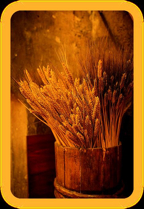Лугнасад. Хлеб первого урожая, первый сноп. Ia__10