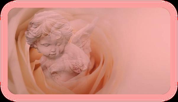Розовая магия. Целебные и магические свойства розы. U_ao_610