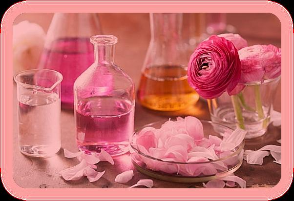 Розовая магия. Целебные и магические свойства розы. Uaao_a12