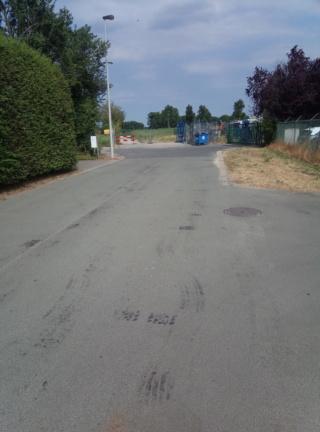 L059 05 Beveren -  Zwijndrecht (langs de lijn L59 - Fietssnelweg F4)  Img_2012